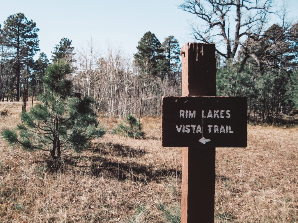 Rim Lakes Vista Trail